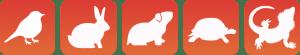 bayareabird_icons