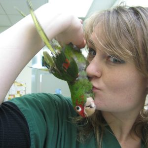 BABH's assistant Zoe goofs off with her rescue conure.